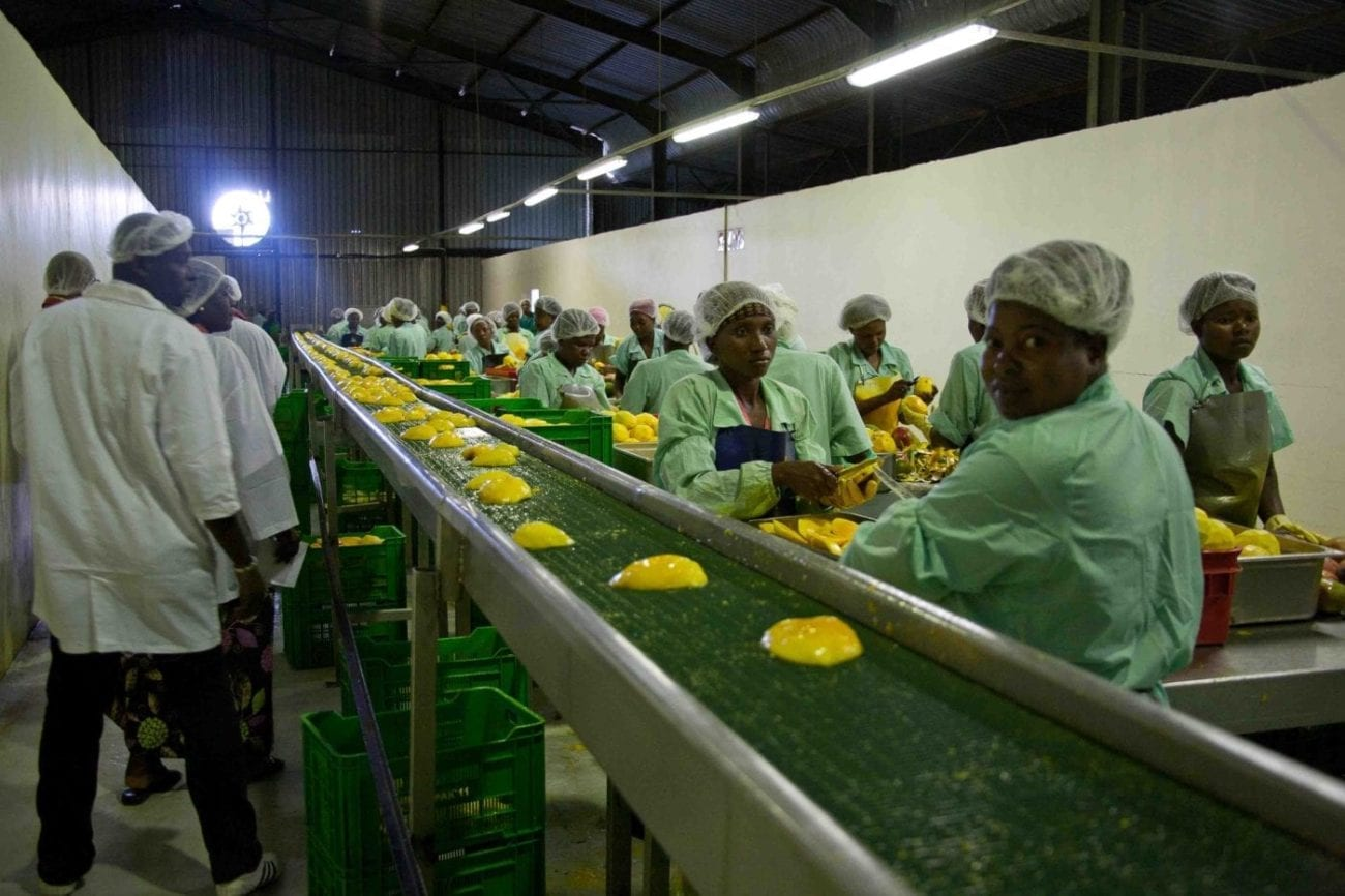 Developing the Mango Processing Industry in West Africa