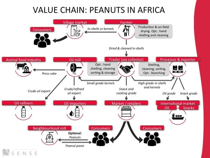 In detail: the peanut value chain