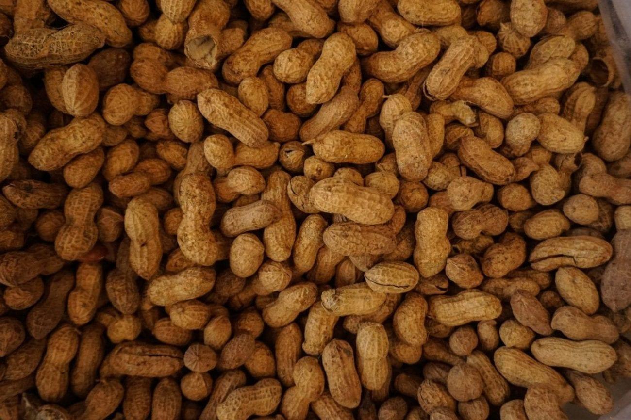 Peanut Industry in Africa | Sense | Making sense of development